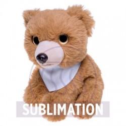 Shaggy, plush teddy bear